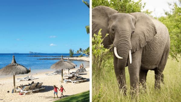 Sør-Afrika og Mauritus | Familieferie