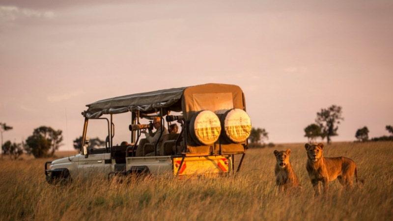 safari-kenya-love-foto