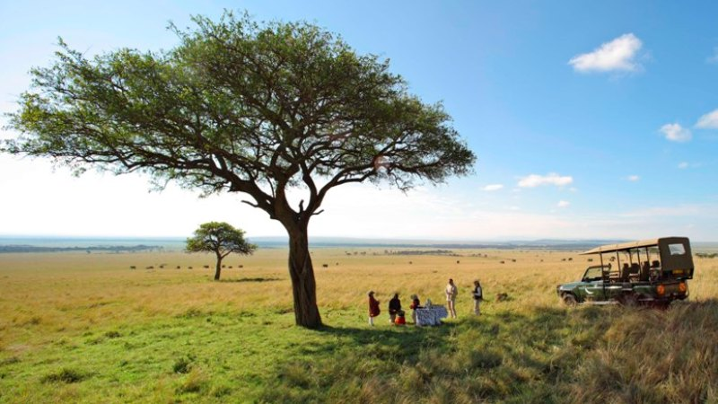 piknik-savanne-safari-afrika