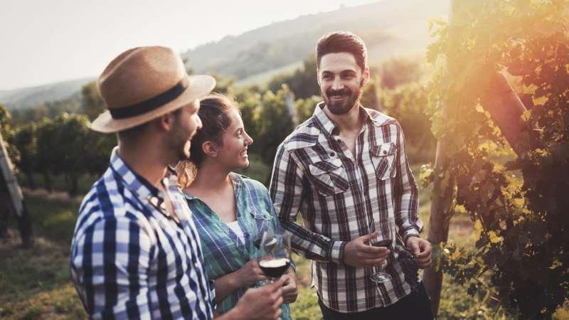 vinsmaking-vingard-gruppereise