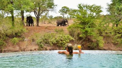 sor-afrika-imbali-safari-lodge-elefant