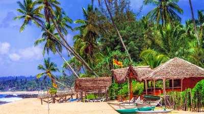 strand-palmer-hus-sri_lanka-reise